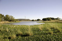 Landskap i natur Royaltyfria Bilder