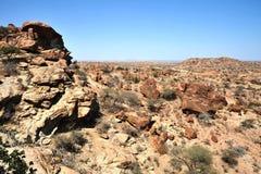 Landskap i området av Las Gil Royaltyfri Foto