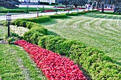 Landskap i parken Arkivbild