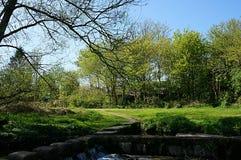 Landskap i parkera Arkivfoto