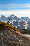 Landskap i Patagonia, Argentina arkivbilder