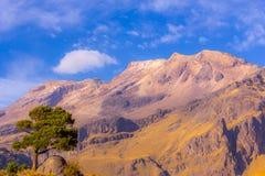 Landskap i skönhetnaturen av Mexico Fotografering för Bildbyråer