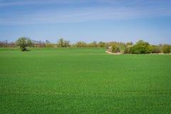 Landskap i Slovakien Royaltyfri Bild