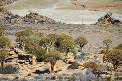 Landskap i Sydafrika Arkivfoto