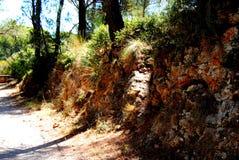 Landskap i Toulon, Frankrike Medelhavs- landskap royaltyfri bild