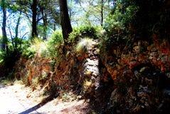 Landskap i Toulon, Frankrike Medelhavs- landskap royaltyfria foton