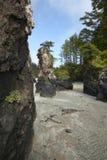 Landskap i udde Scott Park vancouver Kanada arkivbild