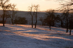 Landskap i vinter mot ljuset Arkivfoton