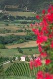 landskap Icke-Urban för grön dal med berg i italienare Abruzzo Arkivbilder