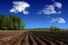 Landskap jordbruk, jordbruksmark i landet Arkivfoton