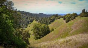 Landskap längs den Fort Bragg Willits vägen i Kalifornien Royaltyfri Fotografi