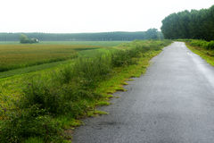 Landskap längs Poet River Royaltyfria Foton