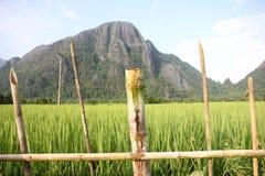 Landskap Laos Royaltyfri Foto