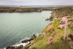 Landskap Malin Beg Ståndsmässiga Donegal ireland royaltyfri bild