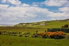 Landskap Malin huvud Inishowen Ståndsmässiga Donegal ireland royaltyfri foto
