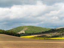Landskap med åkerbruka fält och grönområden på en Sunny Day med molnig himmel royaltyfri bild