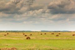 Landskap med balen av sugrör Royaltyfri Fotografi