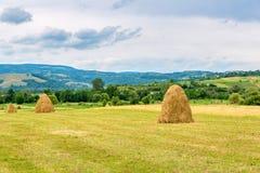 Landskap med baler av sugrör Arkivbild