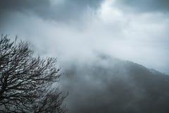 Landskap med berg i dimma och moln Fotografering för Bildbyråer