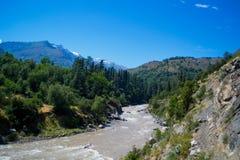 Landskap med berg och träd för en flod Arkivbild
