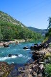 Landskap med bergträd och en flod framme Royaltyfria Foton
