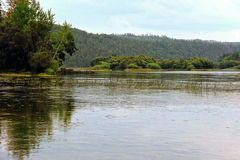 Landskap med bilden av floden i Sibirien fotografering för bildbyråer