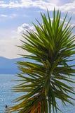 Landskap med bilden av Garda sjön Royaltyfri Bild