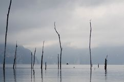 Landskap med den dimmiga sjön och berget arkivfoton