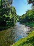 Landskap med den härliga naturen och den snabba floden Royaltyfri Foto