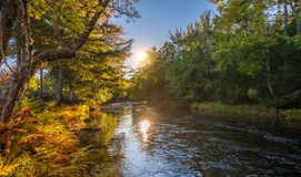 Landskap med den höstskogen och floden royaltyfria bilder