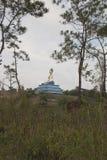Landskap med den Lok Yeay Meo statyn fotografering för bildbyråer