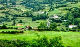 Landskap med det gröna fältet och kullar Royaltyfria Bilder