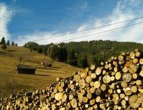 Landskap med det klippta trä och huset Royaltyfria Foton