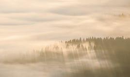 Landskap med dimma i dalen fotografering för bildbyråer