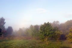 landskap med dimmigt royaltyfria foton