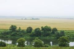 Landskap med en flod och ett gult fält Royaltyfri Bild