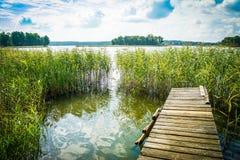 Landskap med en sjö och en gammal bro, en plattform, en stege in i vattnet på en klar solig dag royaltyfria foton