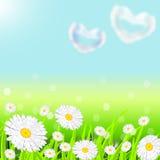 Landskap med ett grönt gräs stock illustrationer