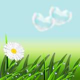 Landskap med ett grönt gräs royaltyfri illustrationer