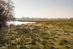 Landskap med ett naturligt damm och glaserade ruggar av gräs Arkivfoton