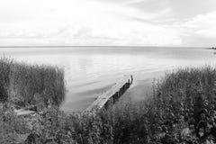 Landskap med floden royaltyfri bild