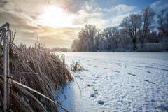 Landskap med floden i frostig dag Vinter Royaltyfri Foto