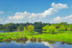 Landskap med flodvatten av den Narew floden, Polen. arkivbilder