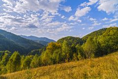 landskap med forested kullar Arkivbilder