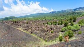 Landskap med gamla krater av den Etna vulkan Fotografering för Bildbyråer