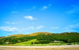 Landskap med gröna kullar, blå himmel, hus och djur på sparat arkivbild