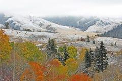 Landskap med höst färgar och första snow arkivbild