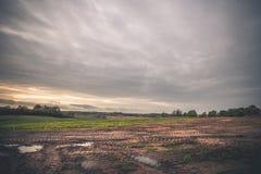Landskap med hjulspår på ett lerigt fält Royaltyfri Bild