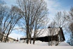 Landskap med huset, träd och snö Royaltyfri Foto