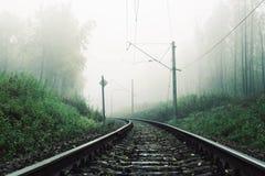 Landskap med järnvägen i skogen i dimman arkivfoto